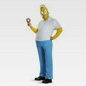 Homer Halloween costumes